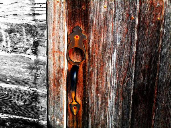 Wood Poster featuring the photograph Door To The Past by Julie Hamilton