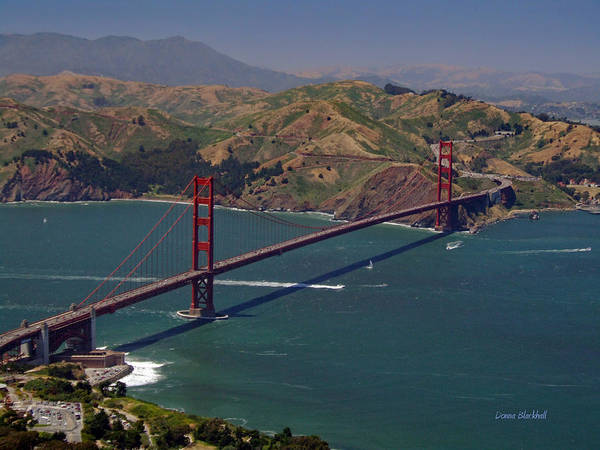Golden Gate Bridge Poster featuring the photograph Golden Gate by Donna Blackhall