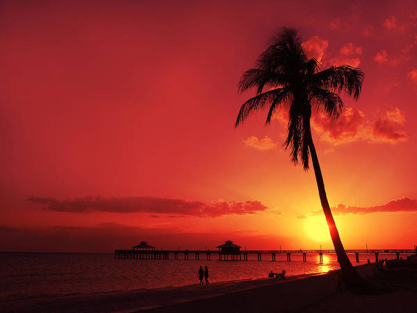 Usa Poster featuring the photograph Romantic Sunset by Melanie Viola