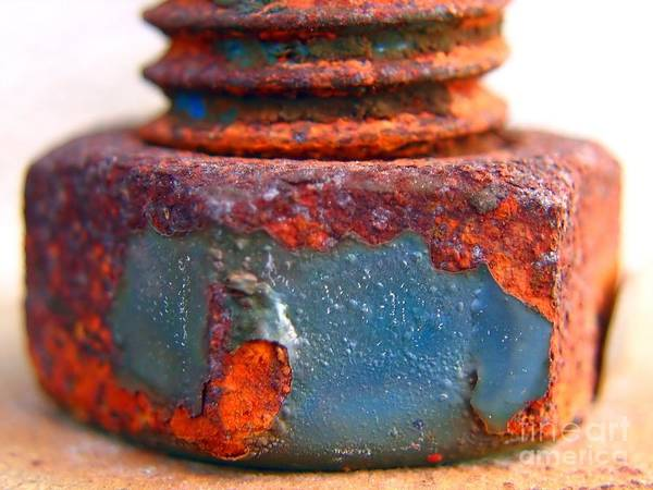 Rust Poster featuring the photograph Rusty Screw And Bolt by Yali Shi