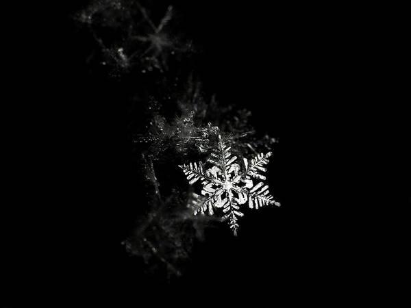 Horizontal Poster featuring the photograph Snowflake by Mark Watson (kalimistuk)