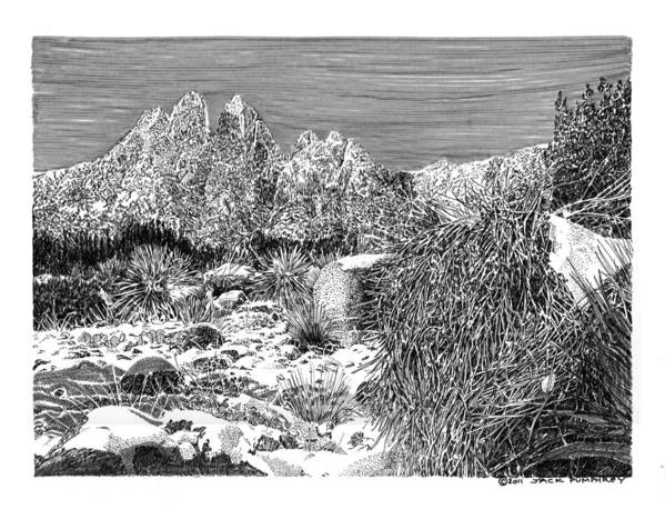 Framed Prints And Note Cards Of Ink Drawings Of Scenic Southern New Mexico. Framed Canvas Prints Of Pen And Ink Images Of Southern New Mexico. Black And White Art Of Southern New Mexico Poster featuring the painting Organ Mountain Wintertime by Jack Pumphrey