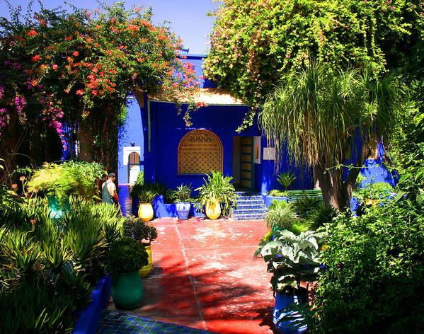 Majorelle Garden Poster featuring the photograph Majorelle Garden Marrakesh Morocco by Ralph A Ledergerber-Photography