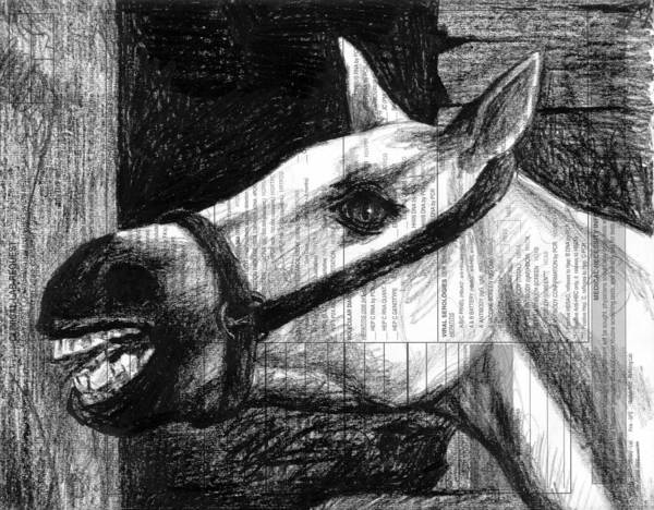 White Poster featuring the drawing Horse by Mark Zelmer