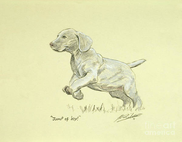 Dog Paintings Poster featuring the pastel Jump Of Joy by John Silver