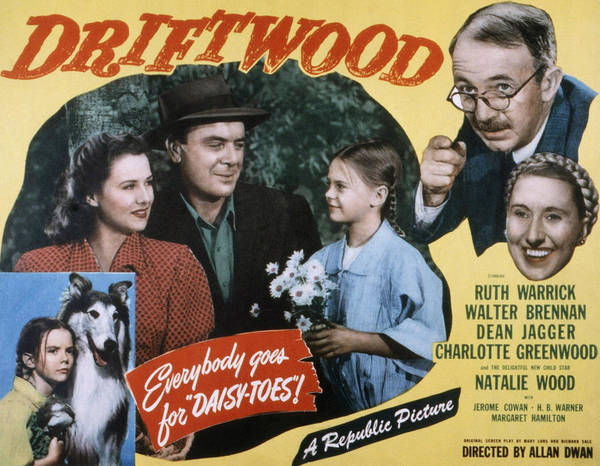 1940s Movies Poster featuring the photograph Driftwood, Ruth Warrick, Dean Jagger by Everett