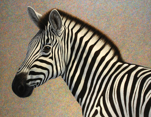 Zebra Poster featuring the painting Principled by James W Johnson