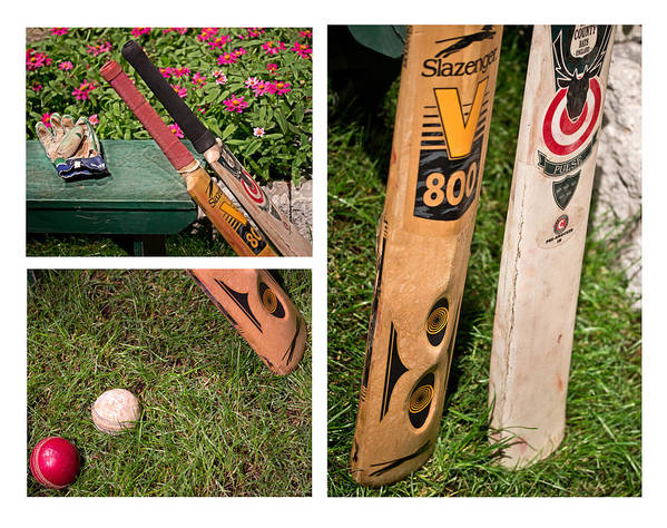 Cricket Poster featuring the photograph Cricket Series by Tom Gari Gallery-Three-Photography