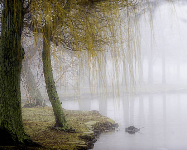 Fog Poster featuring the photograph Foggy Lake Morning by Vicki Jauron