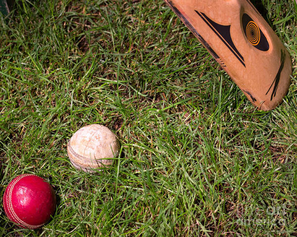 Cricket Poster featuring the photograph Tools Of The Game by Tom Gari Gallery-Three-Photography