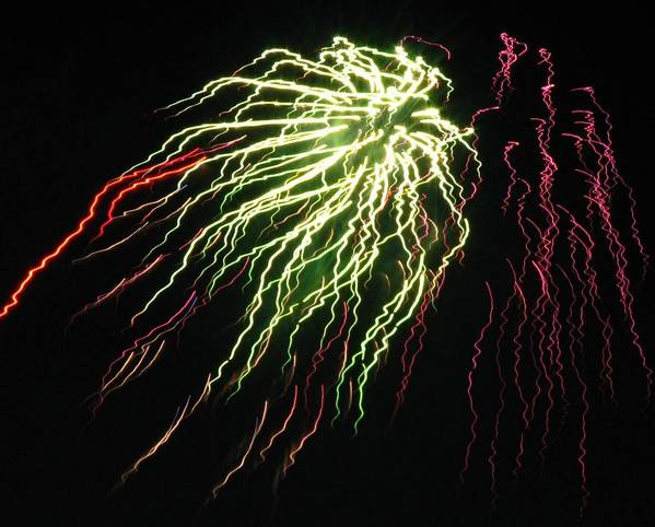 Fireworks Poster featuring the photograph Electric Jellyfish by Rhonda Barrett