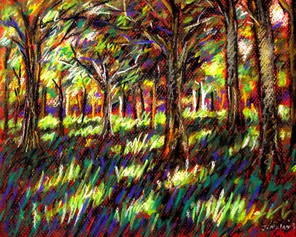Landscape Poster featuring the pastel Sunlight Through The Trees by John Nolan
