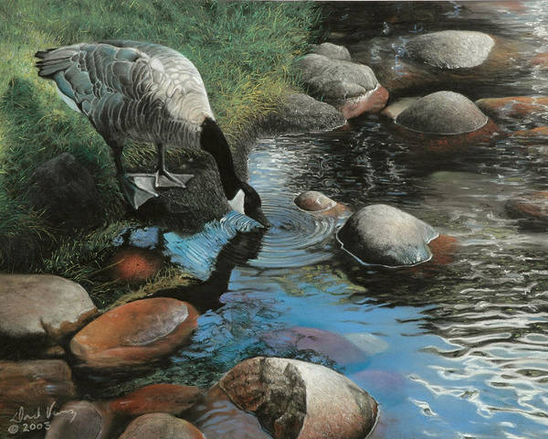 Canadian Geese Poster featuring the painting Abundance by David Vincenzi