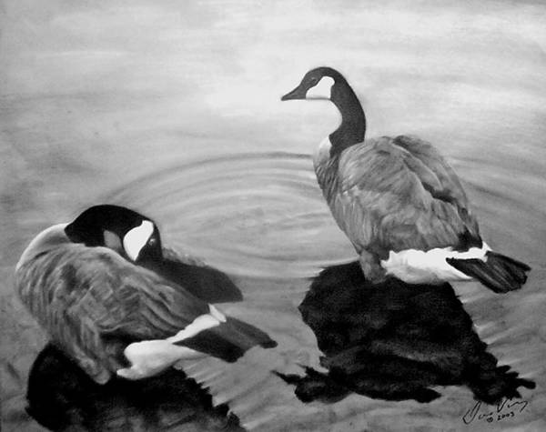 Canadian Geese Poster featuring the painting Life Mates by David Vincenzi