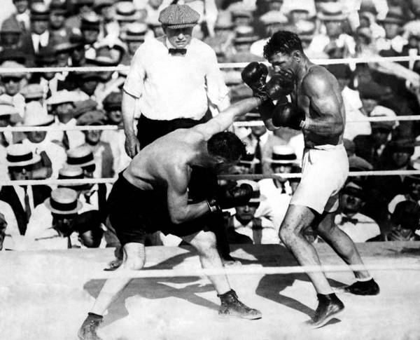 1920s Poster featuring the photograph Jack Dempsey Fights Tommy Gibbons by Everett