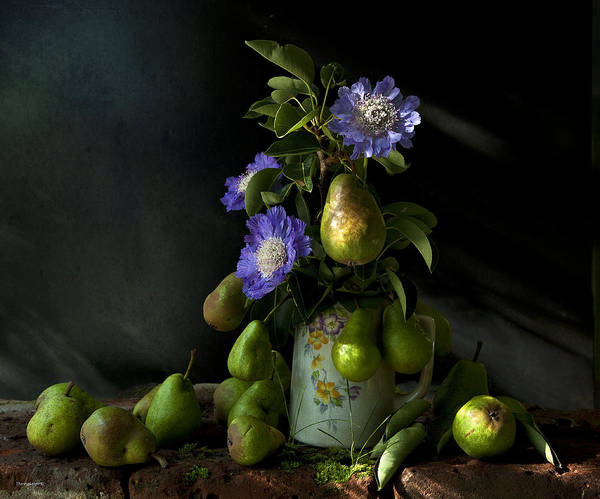 Chiaroscuro Poster featuring the photograph Poires Et Fleurs by Theresa Tahara