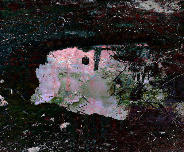 Water Pond Poster featuring the painting Reflective Skylight On A Small Pond Of Water # 1 by Miguel Conesa Osuna