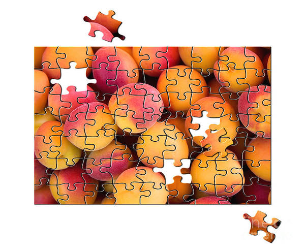 Apricot Poster featuring the photograph Fruit Jigsaw1 by Jane Rix