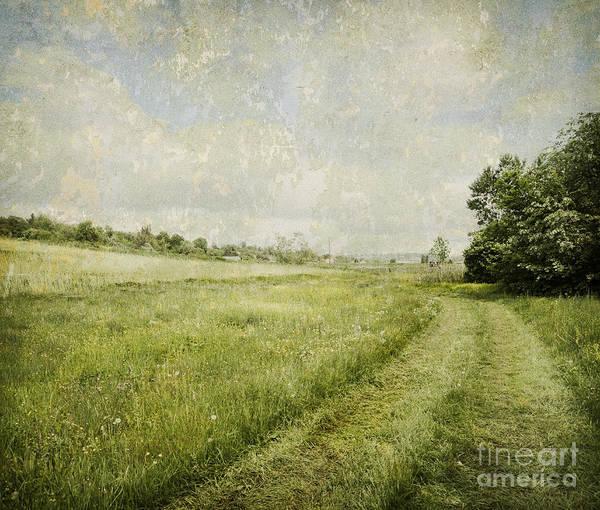 Landscape Poster featuring the digital art Vintage Landscape by Jelena Jovanovic