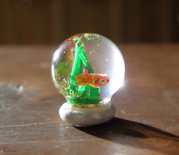 Miniature Snowglobe Canvas Prints Poster featuring the sculpture Fish Globe by Wendy McKennon