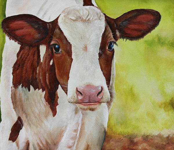 Cow Poster featuring the painting Marigold by Laura Carey