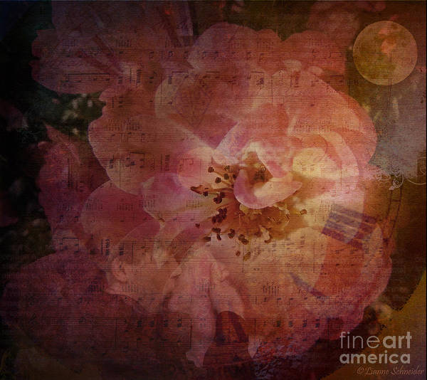 Roses Poster featuring the digital art As Time Goes By by Lianne Schneider