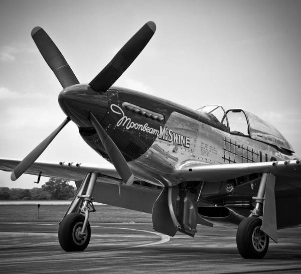 P-51 Mustang Poster featuring the photograph P 51 Mustang by Eric Miller