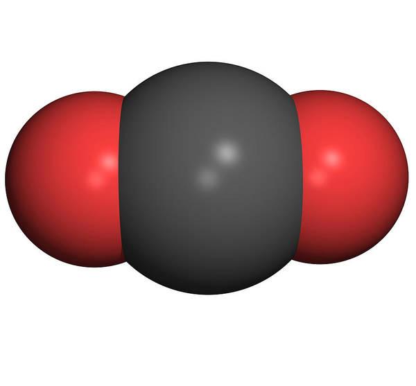 Carbon Dioxide Poster featuring the photograph Carbon Dioxide Molecule by Friedrich Saurer