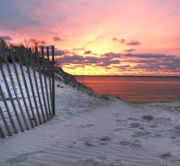 Beach Poster featuring the photograph Magenta Sunrise by Vicki Jauron