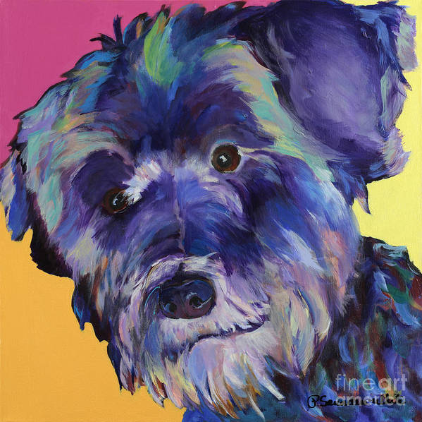 Schnauzer Acrylic Painting Poster featuring the painting Beau by Pat Saunders-White