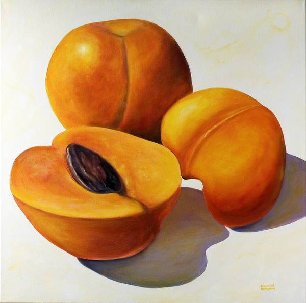 Apricots Poster featuring the painting Apricots by Shannon Grissom