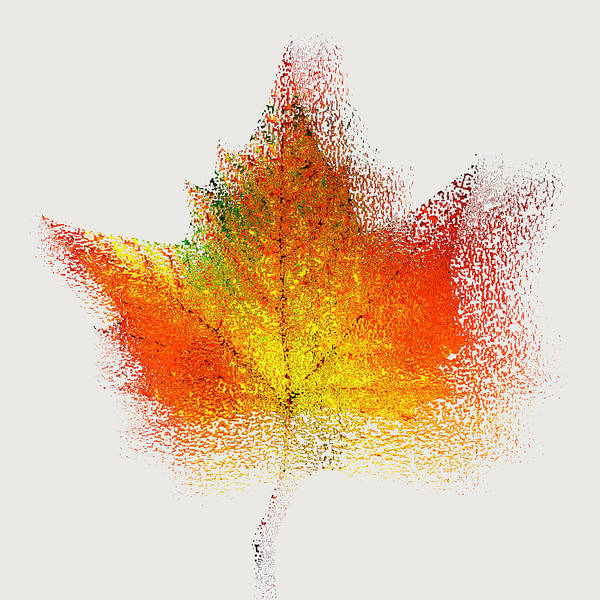 Nature Poster featuring the photograph Autumn Abstract Colorful Orange Green Yellow Nature Fine Art Photograph Digital Painting by Artecco Fine Art Photography