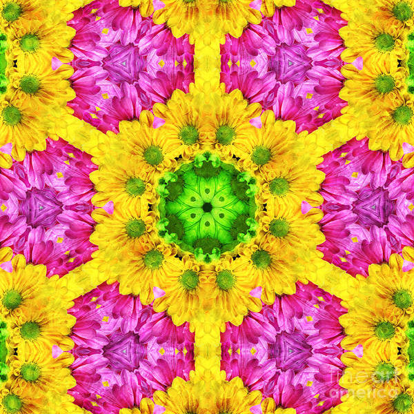 Abstract Poster featuring the photograph Crazy Daises - Spring Flowers - Bouquet - Gerber Daisy Wanna Be - Kaleidoscope 1 by Andee Design