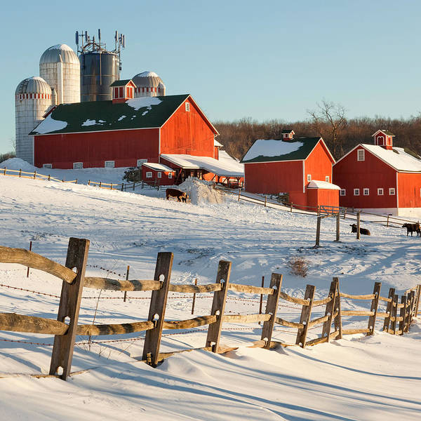 Barns Poster featuring the photograph Happy Acres Farm Square by Bill Wakeley