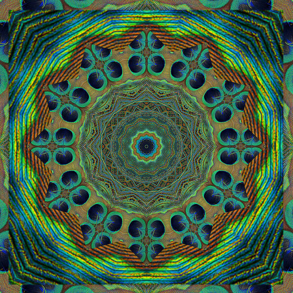 Mandalas Poster featuring the photograph Healing Mandala 19 by Bell And Todd