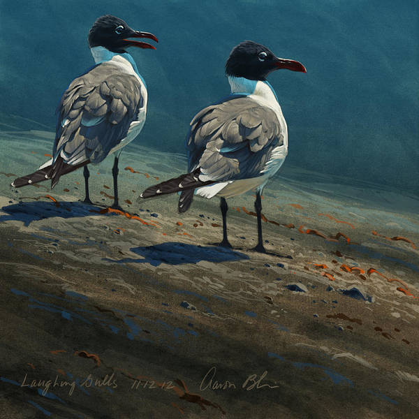Birds Poster featuring the digital art Laughing Gulls by Aaron Blaise