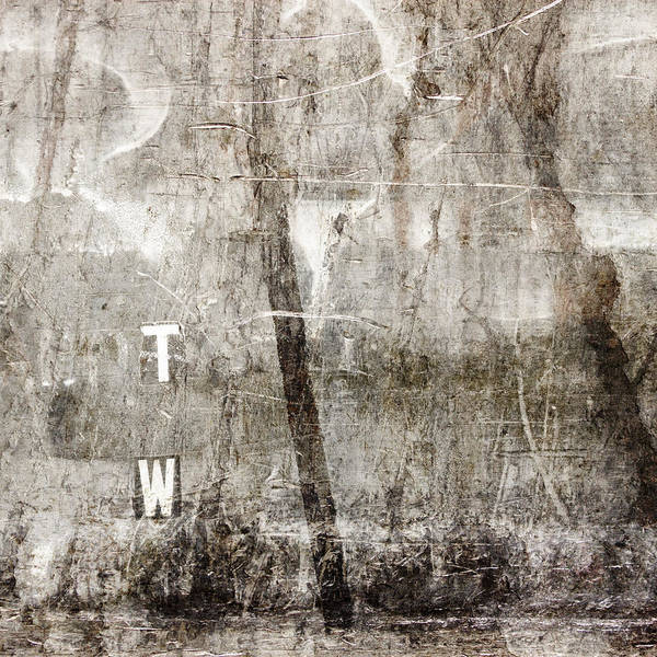 Grunge Poster featuring the photograph T W by Carol Leigh
