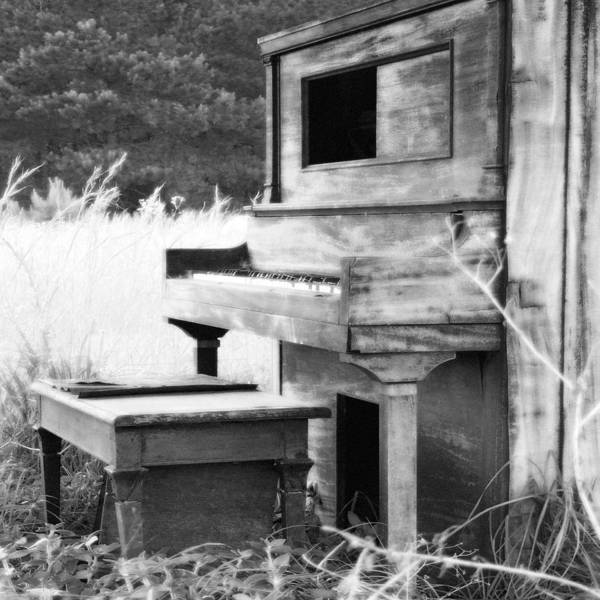 Landscape Poster featuring the photograph Weathered Piano by Mike McGlothlen
