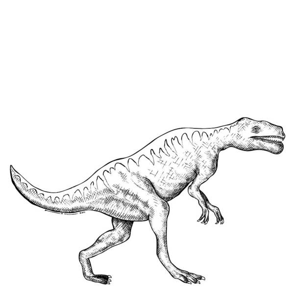 Cartoon Poster featuring the drawing Dorkosaurus - Dinosaur by Karl Addison