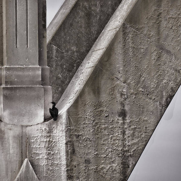 Architecture Poster featuring the photograph Architectural Detail by Carol Leigh