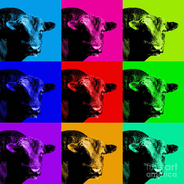 Bull Poster featuring the photograph A Bunch Of Bull by Wingsdomain Art and Photography