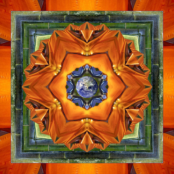 Mandalas Poster featuring the photograph Aura Bamboo by Bell And Todd