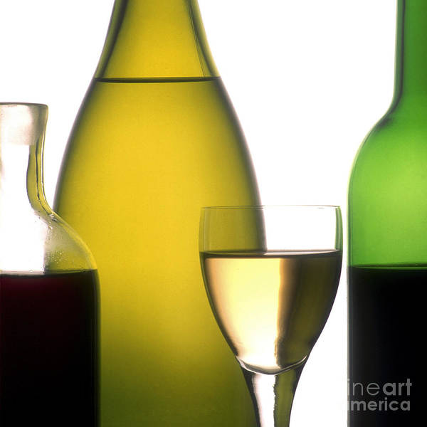 Wines; Wine; White; Ups; Up; Studio; Rose; Ros�; Red; Products; Product; Photo; Outs; Out; Nourishments; Nourishment; Internal Nobody; Interior; Inside; Indoors; Indoor; Inboard; Glasses; Glass; Foodstuffs; Foodstuff; Foods; Food; Drinks; Drinking; Drink; Display; Details; Detail; Cutouts; Cutout; Cut-outs; Cut-out; Cut; Closeups; Closeup; Close-ups; Close-up; Close; Bottles; Bottle; Blush; Beverages; Beverage; And; Alcoholic; Alcohol; French Poster featuring the photograph Bottles Of Variety Vine by Bernard Jaubert