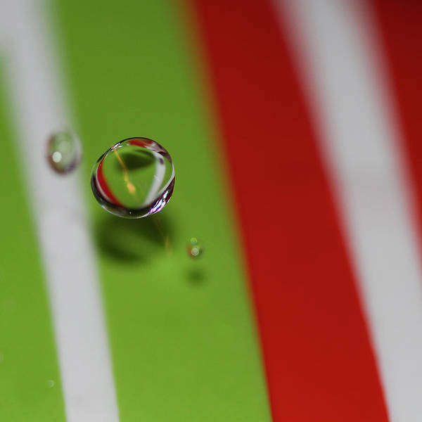 Water Drop Poster featuring the photograph Drop Me Off Here by Rebecca Cozart
