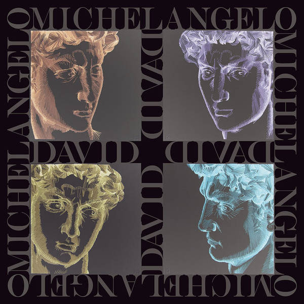 Michelangelo Poster featuring the tapestry - textile Faces Of David In Negative by Barbara Lugge