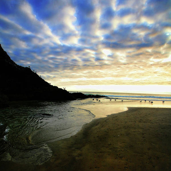 Oregon Coast Photographs Poster featuring the photograph Heceta Head At Dusk by Bonnie Bruno