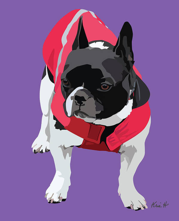 French Bulldog Poster featuring the digital art Lady In Red by Kris Hackleman
