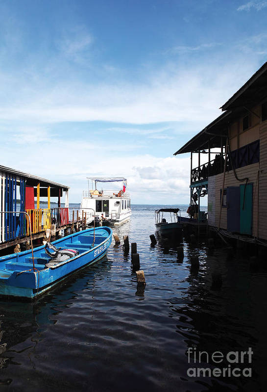 Water Alley In Bocas Town Poster featuring the photograph Water Alley In Bocas Town by John Rizzuto