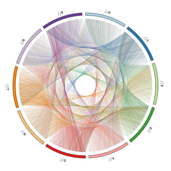 Pi Poster featuring the digital art Flow Of Life Flow Of Pi by Cristian Vasile