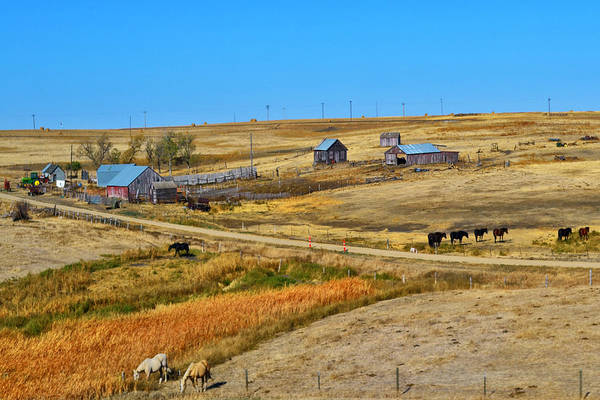 Barns Poster featuring the photograph Home On The Range by Kelly Reber